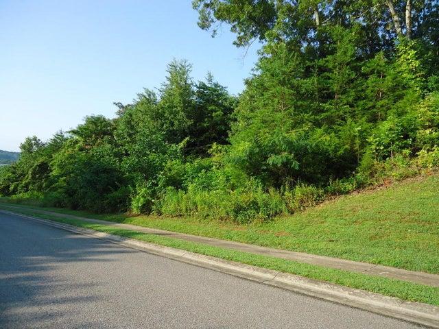 Grand Vista, Vonore, TN 37885