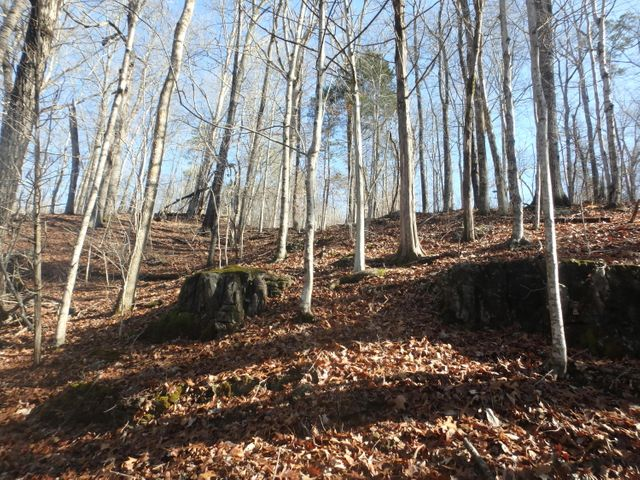 Lot 51 Pinnacle Lane, LaFollette, TN 37766
