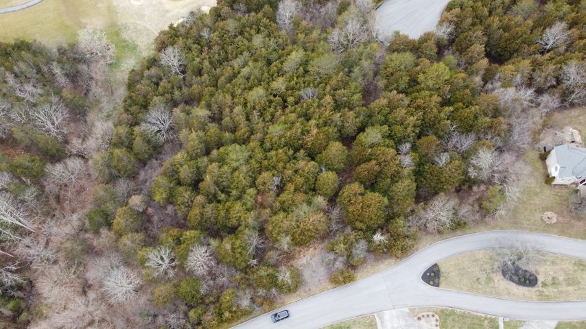 lot 181 Links Court, Tazewell, TN 37879