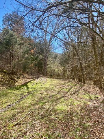 LITLE SYCAMORE Rd, Tazewell, TN 37879