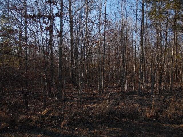 Lot 2 Long Branch Rd, Spencer, TN 38585