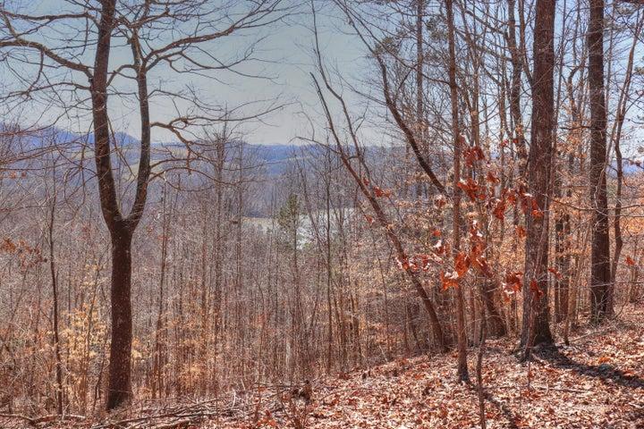 Lot 547 Timber Creek Rd, New Tazewell, TN 37825