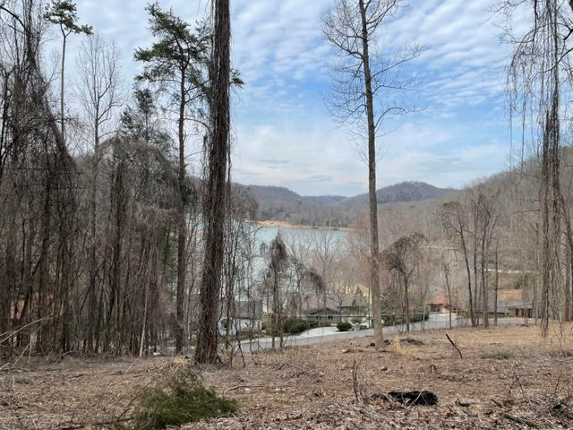 Lot 56 N Shorewood Drive, Caryville, TN 37714