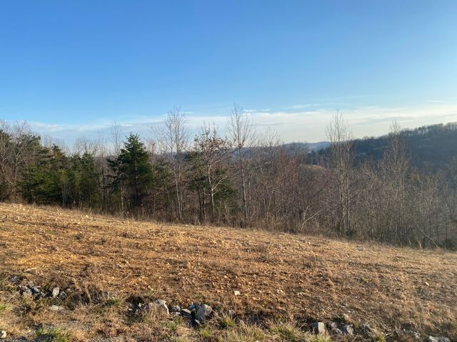Panoramic Drive, Maynardville, TN 37807