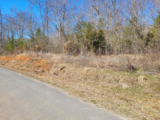 Hayden Drive, New Tazewell, TN 37825