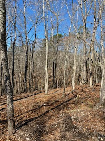 Big Creek Rd, LaFollette, TN 37766
