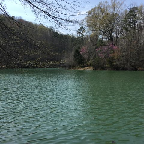 Lot 5 & 6 Harbor Lane, LaFollette, TN 37766