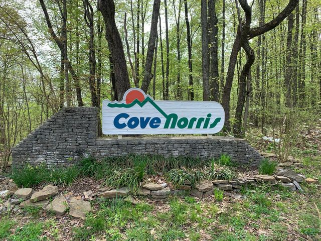 Cove Norris Rd, Caryville, TN 37714
