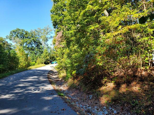 Lot 579 Tortoiseshell Circle, New Tazewell, TN 37825