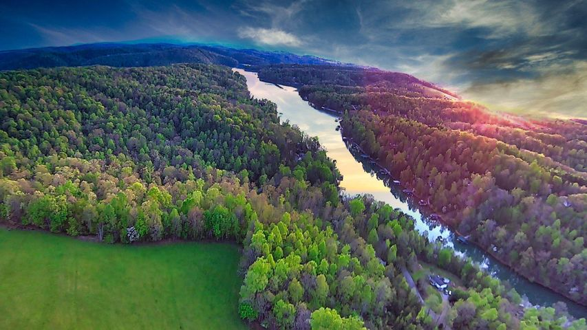 Within 50 yards of Cove Point Road and 100 yards from Norris Lake/Racetrack Hollow