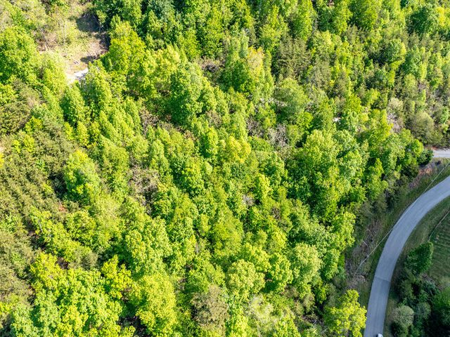 Lot 594 Whistle Valley Rd, New Tazewell, TN 37825