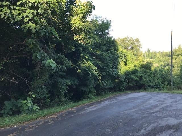 Eagle Cove Pkwy, Maynardville, TN 37807