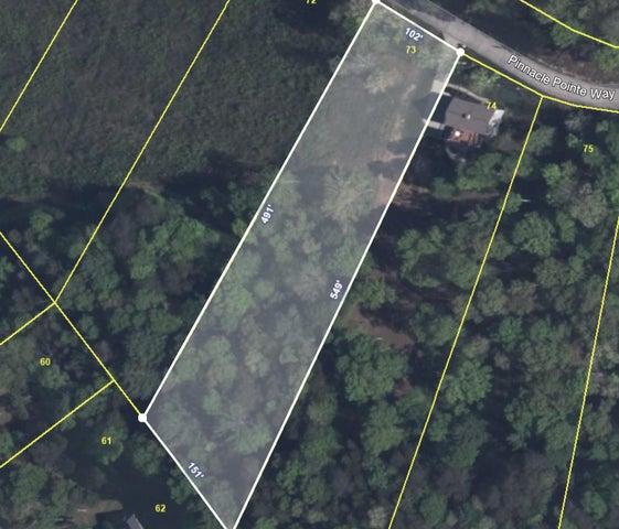 Pinnacle Point Way Way, Sharps Chapel, TN 37866