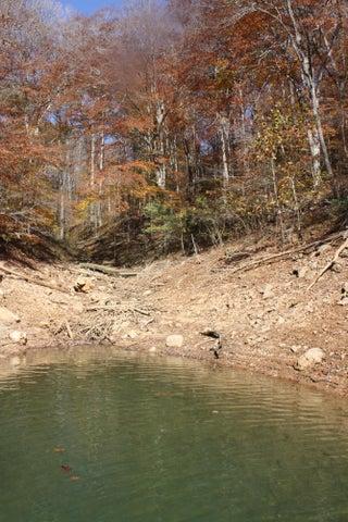Fox Lake Lane, LaFollette, TN 37766