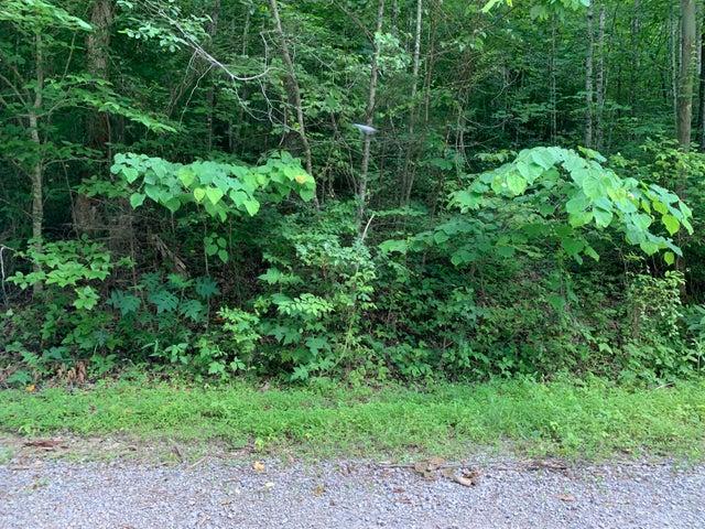 Lot 4 Crestwood Drive, Speedwell, TN 37870