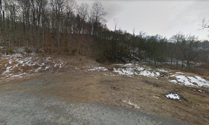 Arcadian Springs Drive, Andersonville, TN 37705