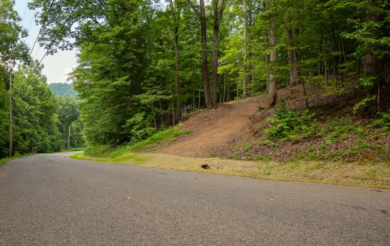 490 Fox Ridge Lane, Caryville, TN 37714
