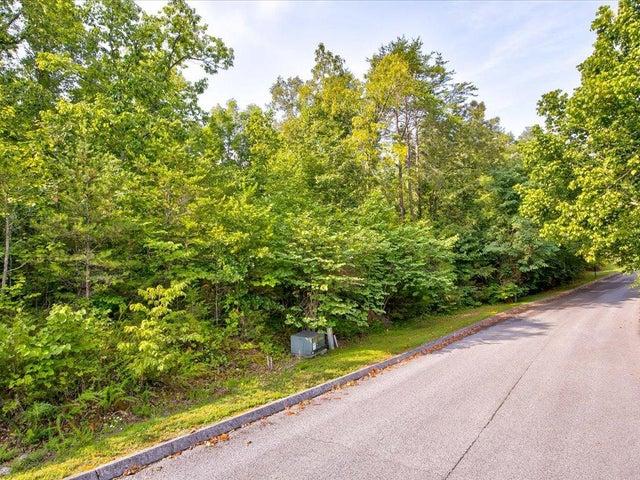 265-266 Woodlake Blvd, Tazewell, TN 37879