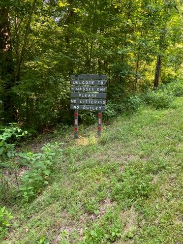 171-173 Hiwassee View Drive, Jacksboro, TN 37757