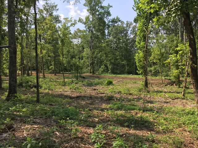 Build your dream home on 5.22 acres with Little Turkey Creek on the property, Farragut/Choto area, very private and quiet setting on the end of the dead end road, with all homes in subdivision on acreage. Property is partially cleared. All utilities available including sewer.  Owner/Agent.