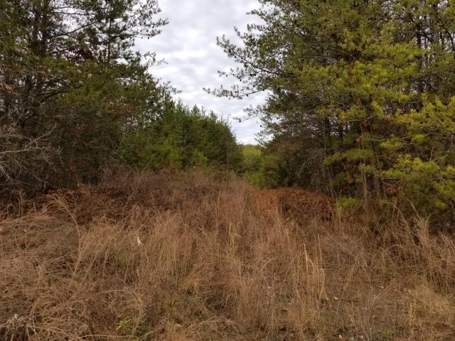 Rare find of 62.8 acres of commercial property zoned C 3 near I 40 at the Gatlinburg/Sevierville exit #407. This property is located across the street from the new industrial park and a new apartment complex both being built at this time.