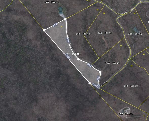 Aerial layout of the property