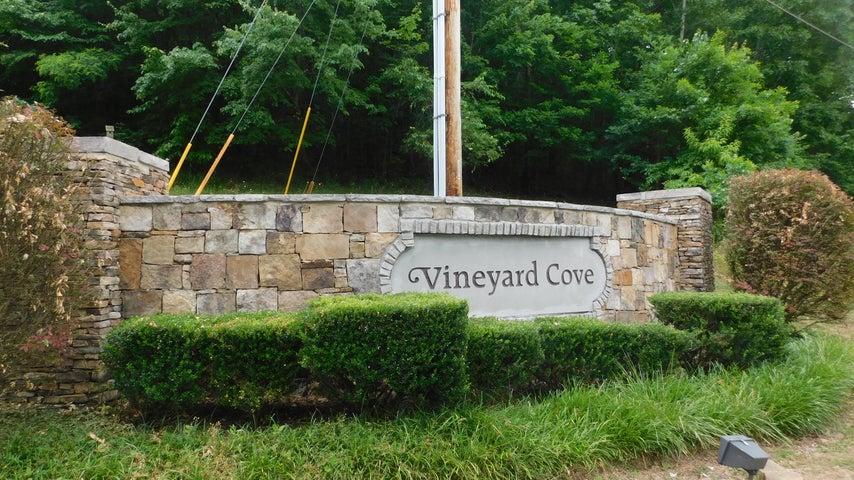 220 Vineyard Cove Drive