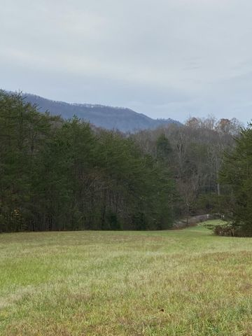 17 ac. Old Chilhowee Rd8MLS1136250
