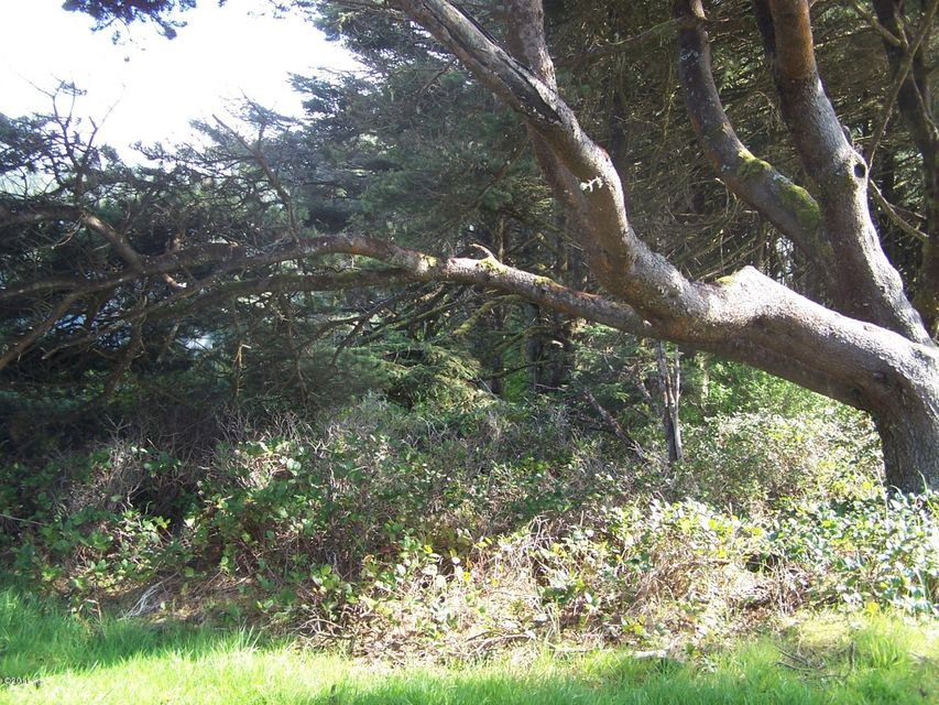 1001 NW Trout St, Yachats, OR 97498 - Ocean view lot