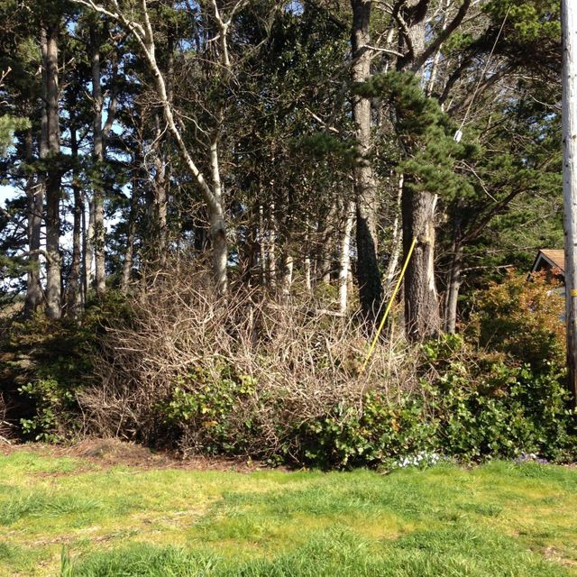 3034 SE Dune Ave, Lincoln City, OR 97367 - lot