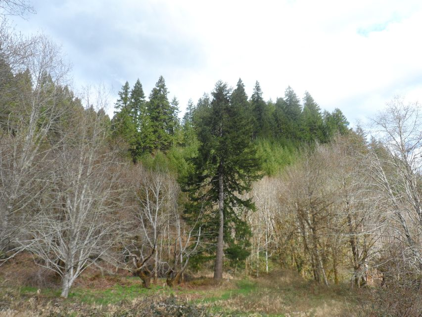 TL201 E Alsea Hwy, Tidewater, OR 97390 - view of parcel from across hwy 34