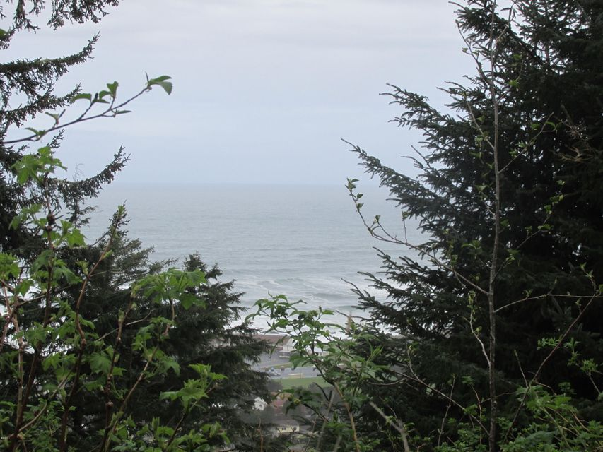 TL 2100 Saki Lane, Yachats, OR 97498 - Ocean view lot 5