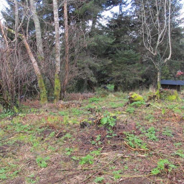 501 Overlook Drive, Yachats, OR 97498 - Frank lot a