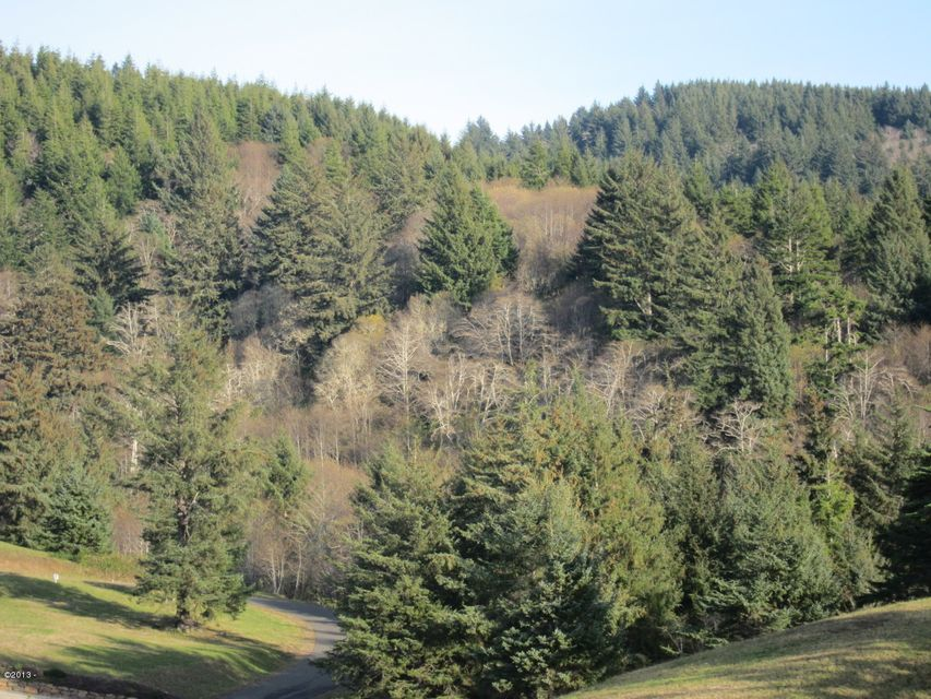 LOT 37 Southview Lane, Pacific City, OR 97135 - Ocean and Valley