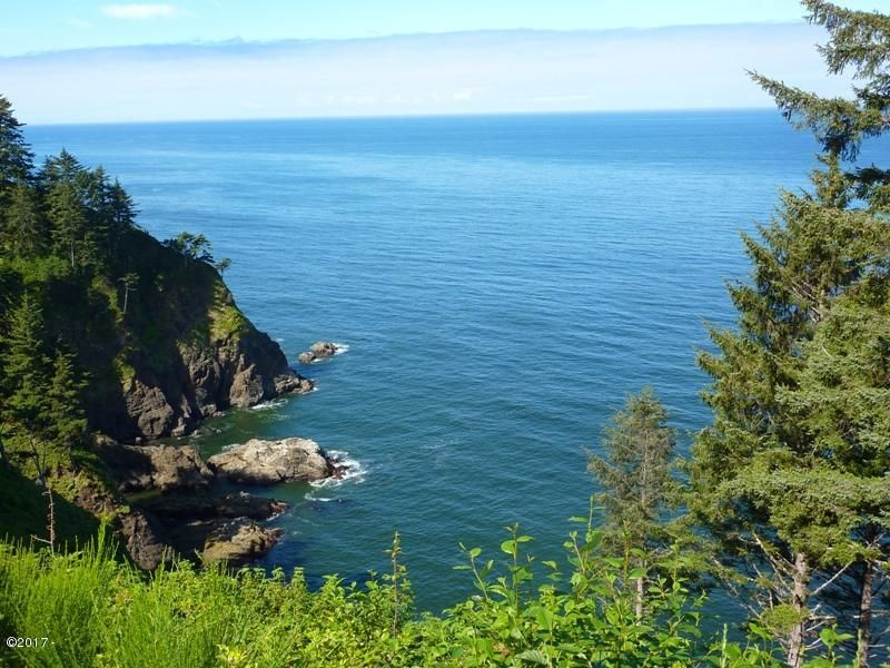 T/L 510 South Beach Road, Neskowin, OR 97149 - Ocean View Lot 11