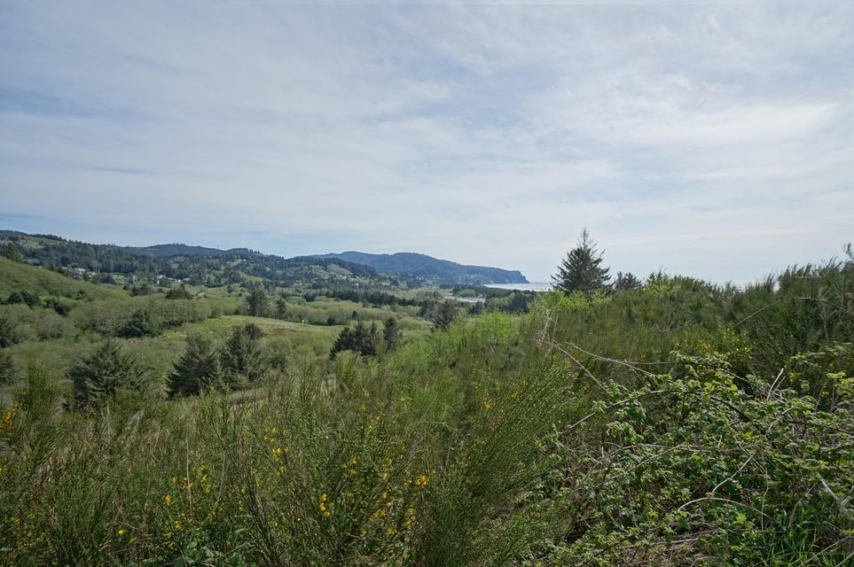 LOT 13 P2 Heron View Dr, Neskowin, OR 97149 - Lot 13 P2