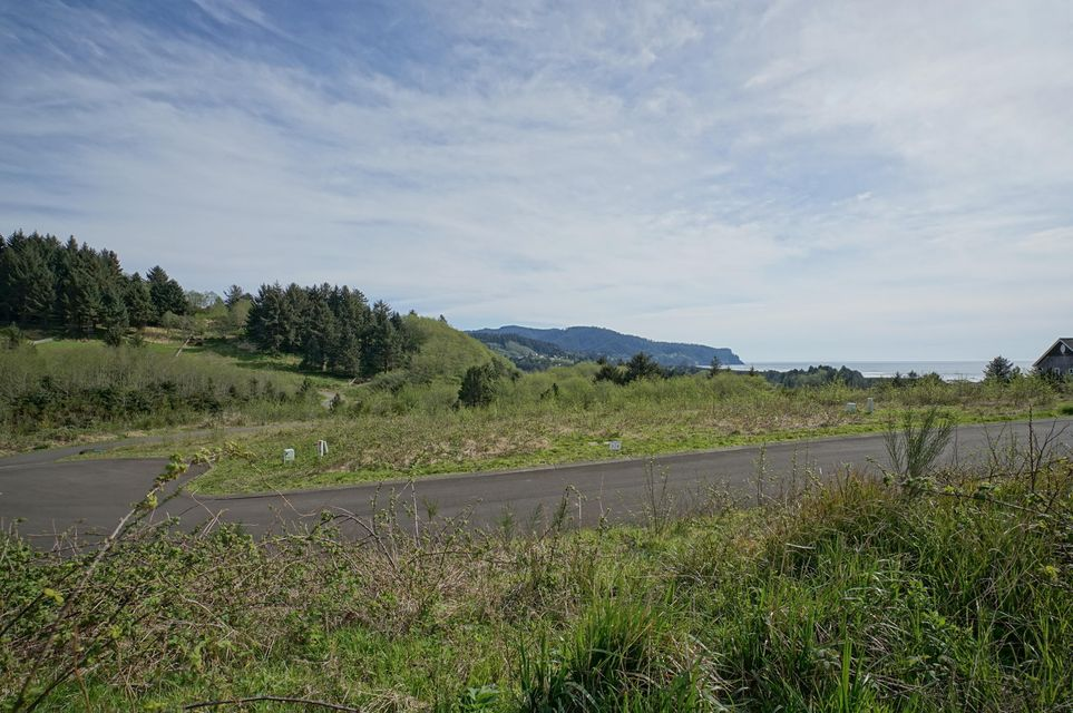 T/L 500 Heron View Dr, Neskowin, OR 97149 - Sahhali South North Lot 5