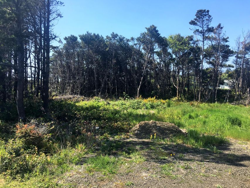 TL 2000 Pacific Coast Highway, Waldport, OR 97394 - .50 acres