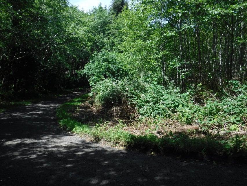 137 NE Hemlock, Yachats, OR 97498 - 137 Hemlock View from NE corner