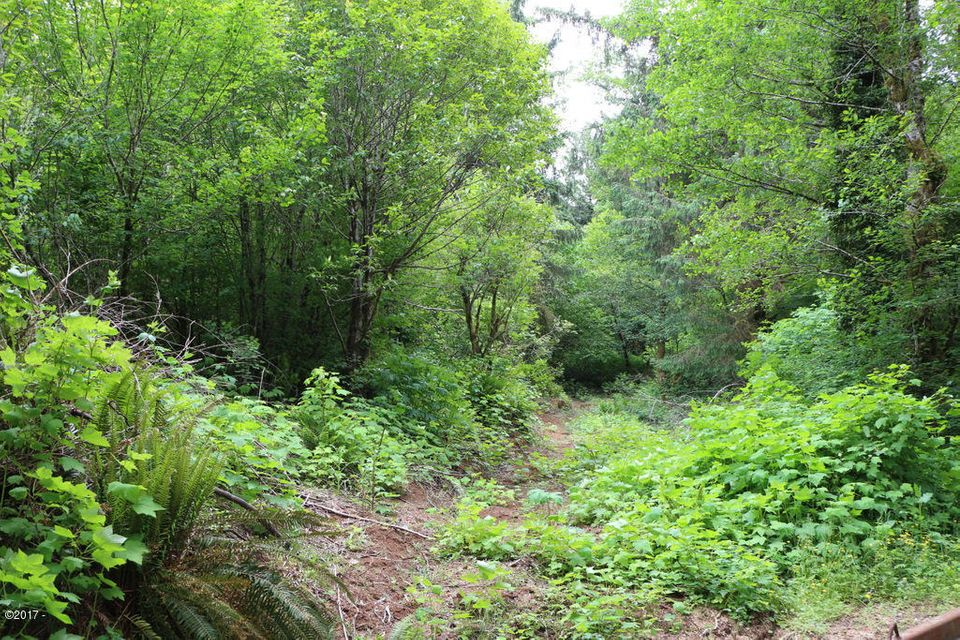 6014 Salmon River Hwy, Otis, OR 97368 - Property access