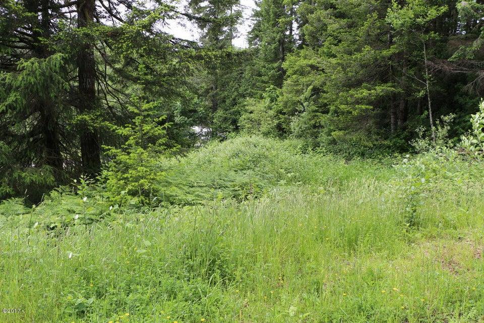 6014 Salmon River Hwy, Otis, OR 97368 - IMG_7806