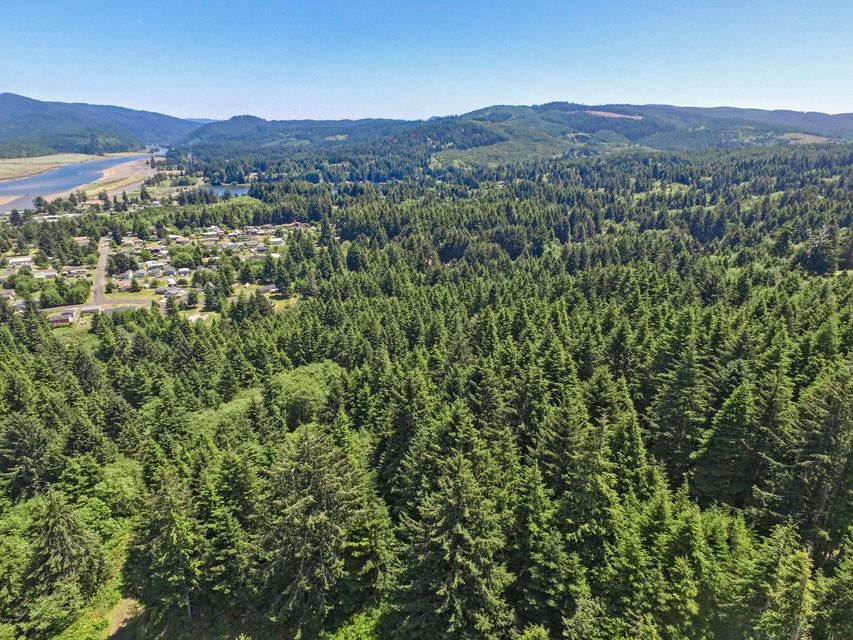 0 Merten Drive, Waldport, OR 97394 - Looking East from Drone