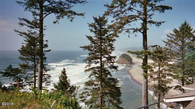 50100 South Beach Rd, Neskowin, OR 97149 - Lot photo