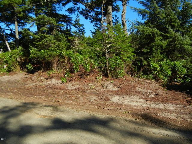TL 500 Pine Road, Pacific City, OR 97135