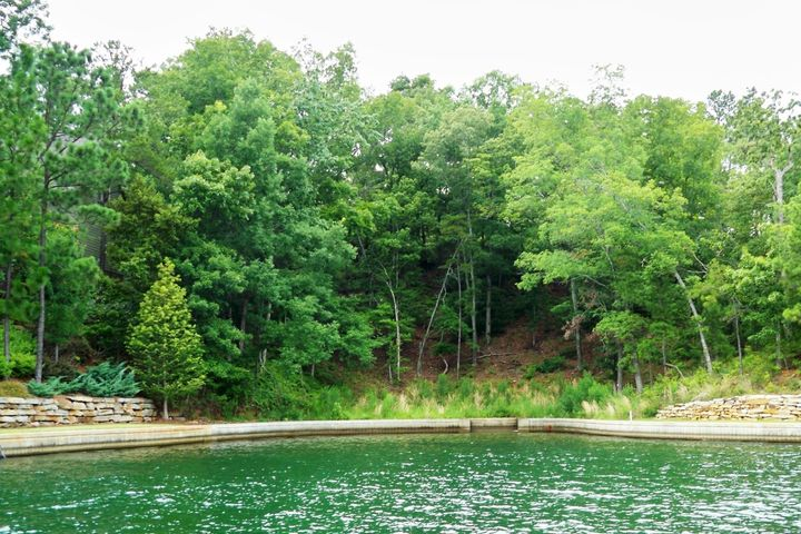 Lot 88 P2 Ridge Crest, Alexander City, AL 35010