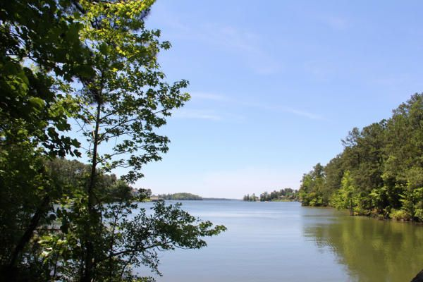 Lot 5 Ph 2 Amber Dr, Jacksons Gap, AL 36861
