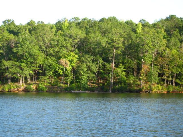 Lot 63 Baywood, Alexander City, AL 35010