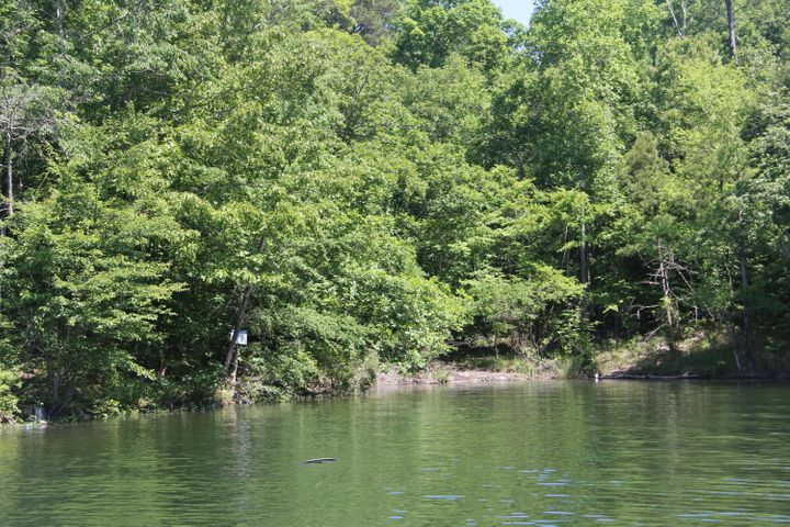 Lot 168 Bear Ln, Dadeville, AL 36853