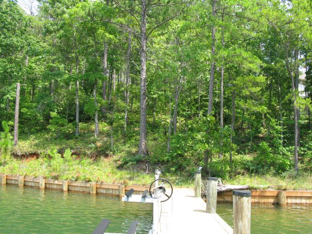 Lot 51A MOUNTAIN Ln, Dadeville, AL 36853
