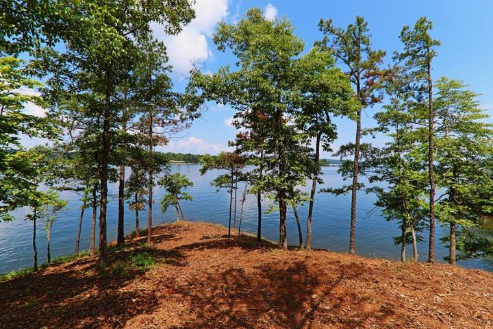The Ridge on Lake Martin, point lot Phase 1